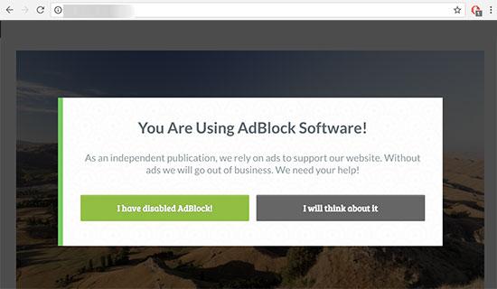 अपनी WordPress Website में AdBlock Users का पता कैसे लगाएं?